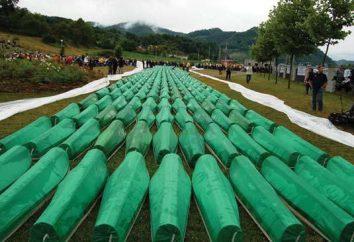 Masakra w Srebrenicy w 1995 roku: Przyczyny