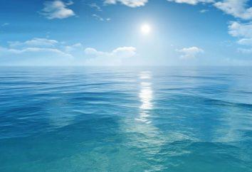 A imagem do mar na poesia romântica russo