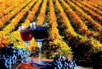Les meilleurs vins du territoire de Krasnodar: évaluation, notation, structure, types et évaluations