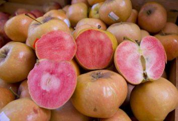 varietà insolite di mele Pink Pearl