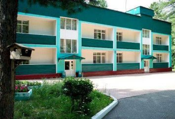 """Sanatorium """"Pine Forest"""" (regionu Kemerowo, wieś Podyakovo): opieki medycznej, żywności, rekreacji"""