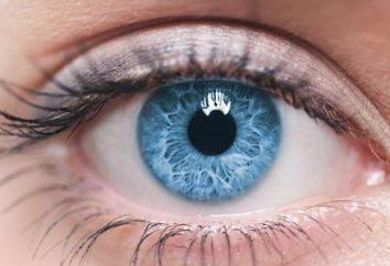 Zalecenia dla utrzymania dobrego wzroku. Witaminy dla wzroku