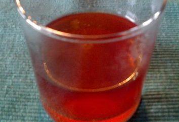 Comment brasser dans un thermos églantier – une méthode de préparation d'une boisson utile