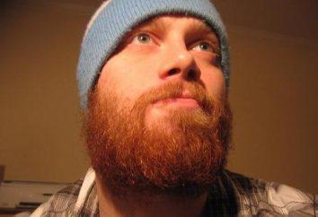 Red barba – elegante, elegante e moderno