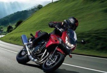 """Suzuki Bandit 250"" (Suzuki Bandit 250): fotos e comentários"
