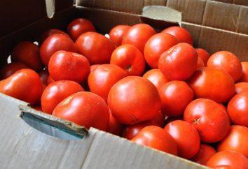 Tambour de tomates dans un seau: recette