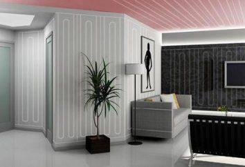 """System """"ciepłe ściany"""": instalacja, cechy i wady"""