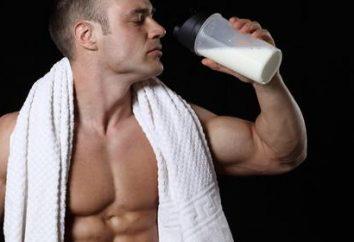 Shaker für Protein – ein treuer Begleiter des Sportlers. wählen Sie mit Bedacht