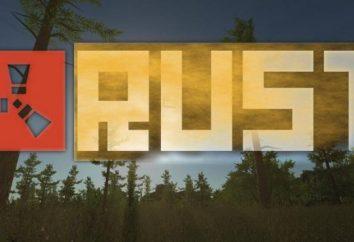 Quali sono i requisiti di sistema a Rust?