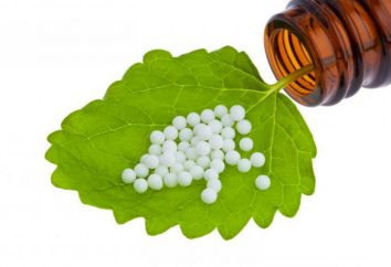 Homeopatia – o que é isso? Os principais remédios homeopáticos. Comentários para o tratamento da homeopatia
