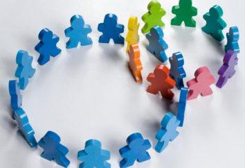 A sociedade como um sistema social e cultural: abordagens para definir