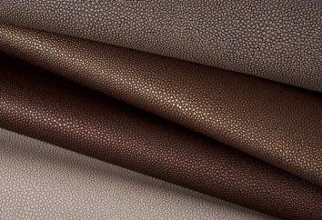 Shagreen – una especie de cuero, papel y la forma de pintar las paredes