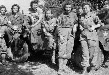 Una enfermera durante la Segunda Guerra Mundial: biografía, apellidos, uniformes, papel, hazaña