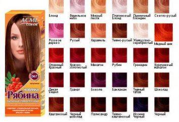 """La paleta de colores de colores """"Rowan"""""""