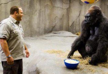 Quel genre de films avec des animaux qui parlent vaut un coup d'oeil?