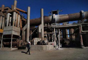 """Ltd. """"pianta Vinzilinsky di clay gravel espanso"""" Tyumen: Descrizione, prodotti e recensioni"""