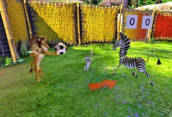 Passaggio di gioco Madagascar. suggerimenti utili