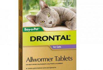 """""""Drontal"""" per i gatti: manuale di istruzioni (recensioni)"""
