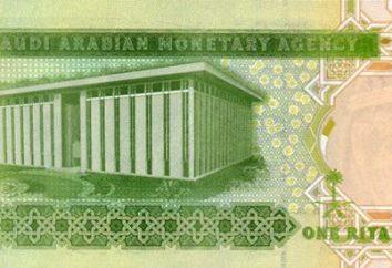 Moeda Arábia Saudita – Rial Saudita