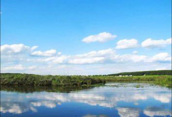 Entspannen Sie sich in der Region Kaluga: Beschreibung Komplexe und Fotos