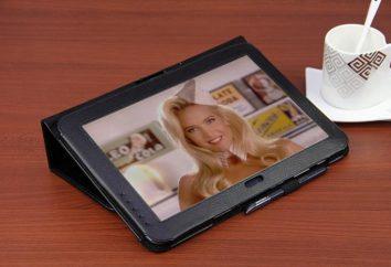 Tablet Samsung Galaxy Note N8000: eine Übersicht über das Modell und Kundenbewertungen