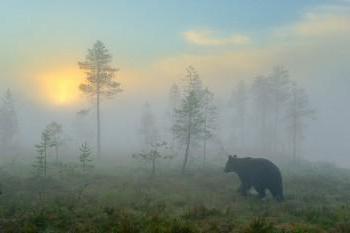 A capital da região de Sakhalin: informações gerais, história e fatos interessantes