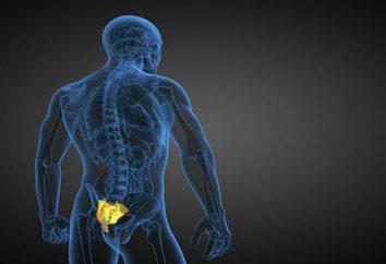 Fracture du sacrum: diagnostic, le traitement, les conséquences. Combien de temps fracture guérison du sacrum