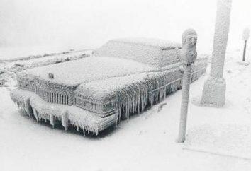 Wie der Motor des Autos für den Winter warm? Wie der Motor für den Winter wärmen Sie sich?