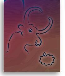 Il miglior segno dello zodiaco – Taurus donna