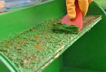 Beizmittel für die Farbe von Metall zu entfernen