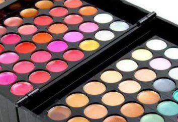 paleta profissional de maquiagem: como escolher o produto perfeito?