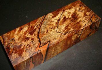 Stabilizacja drewna w domu: Kompozycje, technologii