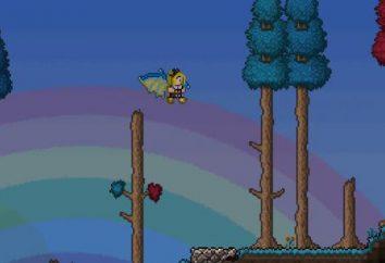"""Como chegar e como fazer asas """"Terraria"""" on """"Android"""""""