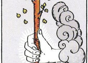 Ace of Wands: la valeur des cartes de tarot et l'interprétation de la combinaison de