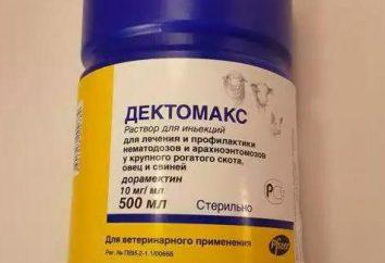 """""""Dectomax"""" für Hunde: Bedienungsanleitung, Bewertungen. Behandlung der demodektischen Erkrankung bei Hunden"""