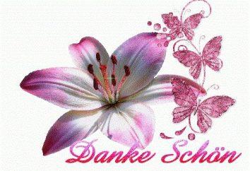 """""""Danke Shon"""": traduction de l'allemand et exemples d'utilisation"""