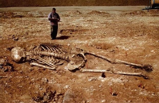 Riesen Menschen Skelette