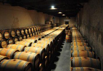 Vin Château – noble boisson avec une longue histoire