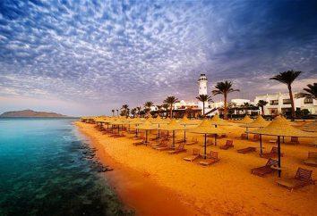 Hotel Verginia Sharm Hotel (Egipt) Zdjęcia, opis i opinie