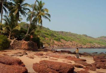 Les meilleurs hôtels à étoiles d'hôtel North Goa