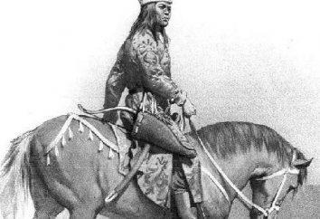 La lutte contre les princes russes Polovtsy (XI-XIII cc.). Vladimir Monomakh, Svyatopolk Izyaslavovich. L'histoire de la Russie kiévienne