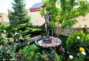 "Chambres d'hôtes ""Valentin"" (Gelendzhik, Blue Bay): adresse, description, avis"
