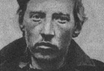 Karakozov Dmitriy Vladimirovich: regicidio o la revolución romántica?