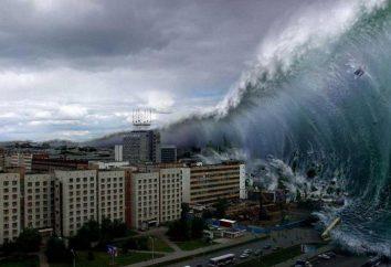 Die Ursachen des Tsunami: die Zeichen der Erscheinung und die Gefahr eines Tsunamis