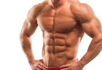 Formation sur le soulagement des muscles