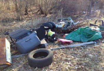 Śmieci w lesie szkody, sposoby rozwiązywania problemów i konsekwencji