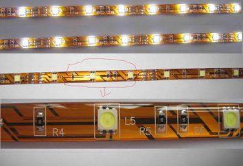 Tipi e generi di strisce del LED: descrizione e caratteristiche
