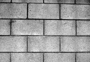 Mur de blocs: caractéristiques, revues. Blocs de blocs de béton