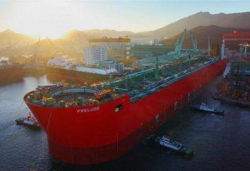 I più grandi navi. La più grande nave del mondo: foto