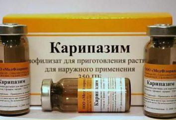 Le médicament « Karipazim ». Electrophorèse – quel est-il?